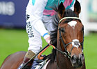 Frankel Again Cartier Horse of the Year