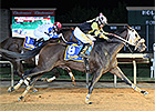 Fred High Foils Favorites at Charles Town