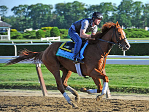 Malibu Moon Boasts Two Belmont Starters