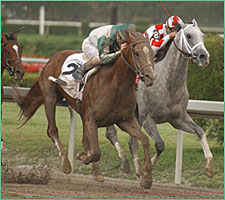 Steve Haskin's Derby Report: An Early Bird Special; Friends Lake Arrives