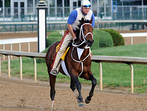 Friesan Fire Given Green Light for Preakness