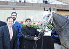 McLaughlin Mulls Derby Schedule for Frosted