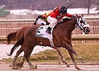 Streaking Funnys Approval Entered in Ruffian