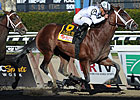 G1 Winner Gemologist Retired to WinStar