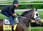 General a Rod Latest to Join Preakness Mix