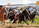 Study Examines EIPH and Racing Performance