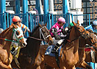 NYRA's On-Track Handle Rises in 2014