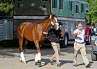 Giant Finish Works Four Furlongs for Belmont