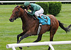 Gio Ponti Top Choice in Arlington Million