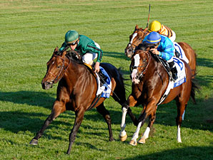 Gio Ponti Back on Track, Repeats in Turf Mile
