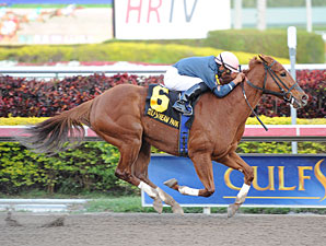 Golden Mystery Cruises in Hurricane Bertie