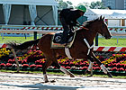 Orb Gallops; No Workout for Goldencents