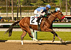 Goldencents Runs True for Sham Stakes Triumph