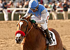 O'Neill Tries Tactical Change for Goldencents