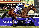 Accelerating Goldikova Wins Mile