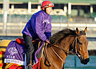 Slideshow: 2011 Breeders' Cup Works