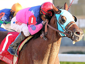 Holy Bull Starts Florida's Triple Crown Trail