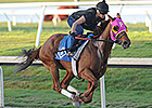 Groupie Doll Works Toward Career Finale