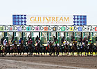 Large Crowd For Gulfstream Opening