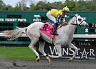 Hansen Tops Derby Graded Stakes Earnings List