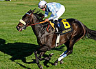 Harmonious Romps in Queen Elizabeth II
