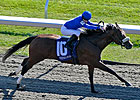 Hatta Fort Gets Up in Perryville Stakes