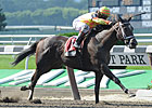 CT Oaks Lures Three Graded Stakes Winners