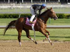 Mott's High Again Turns in Strong Oaks Breeze