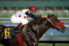 Zito Pair Early Picks in Nine-Horse Florida Derby