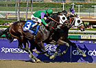 Hightail Captures Juvenile Sprint for Lukas