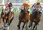 Hollywood Hit Sets Woodbine Mark in Vigil Win