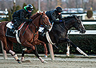 Earliest Derby Future Wager Starts Nov. 27