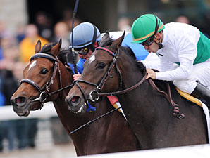 House of Grace Captures Tight Jessamine