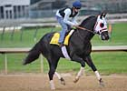 I Want Revenge in Bullet Work for Derby
