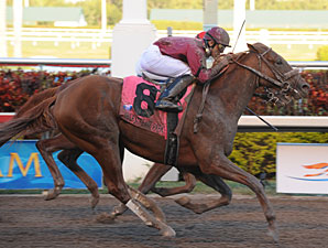 Florida Derby Back up to $1 Million