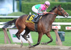 Icon Project Runs Smasher in Personal Ensign