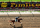 2012 Preakness - Predict the Order
