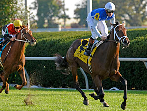 Interactif Favored in Tough Juvenile Turf