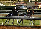 Breeders' Cup News Update for Oct 28, 2014
