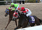 War Story Looks to Turn Tables in LA Derby