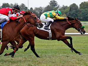Ioya Bigtime Pays Off in KD Turf Cup Effort