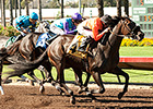 Los Alamitos Concludes First Fall Meet