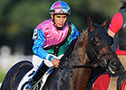 Itsmyluckyday Unlikely to Return in Gold Cup