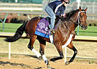 Nov. 1 Workouts at Churchill Downs