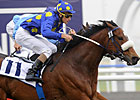 J J the Jet Plane Flies to Victory in Al Quoz