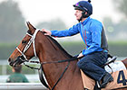 Dubai World Cup: March 27 Morning Training