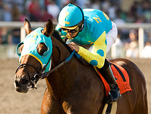 Jaycito has the Staying Power for Ky Derby