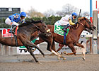 Jersey Town Scores 34-1 Cigar Mile Upset
