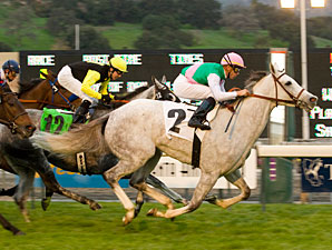 Frankel Lowers Jibboom On Monrovia 'Cap
