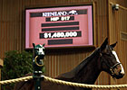 Keeneland January Registers Strong Second Day